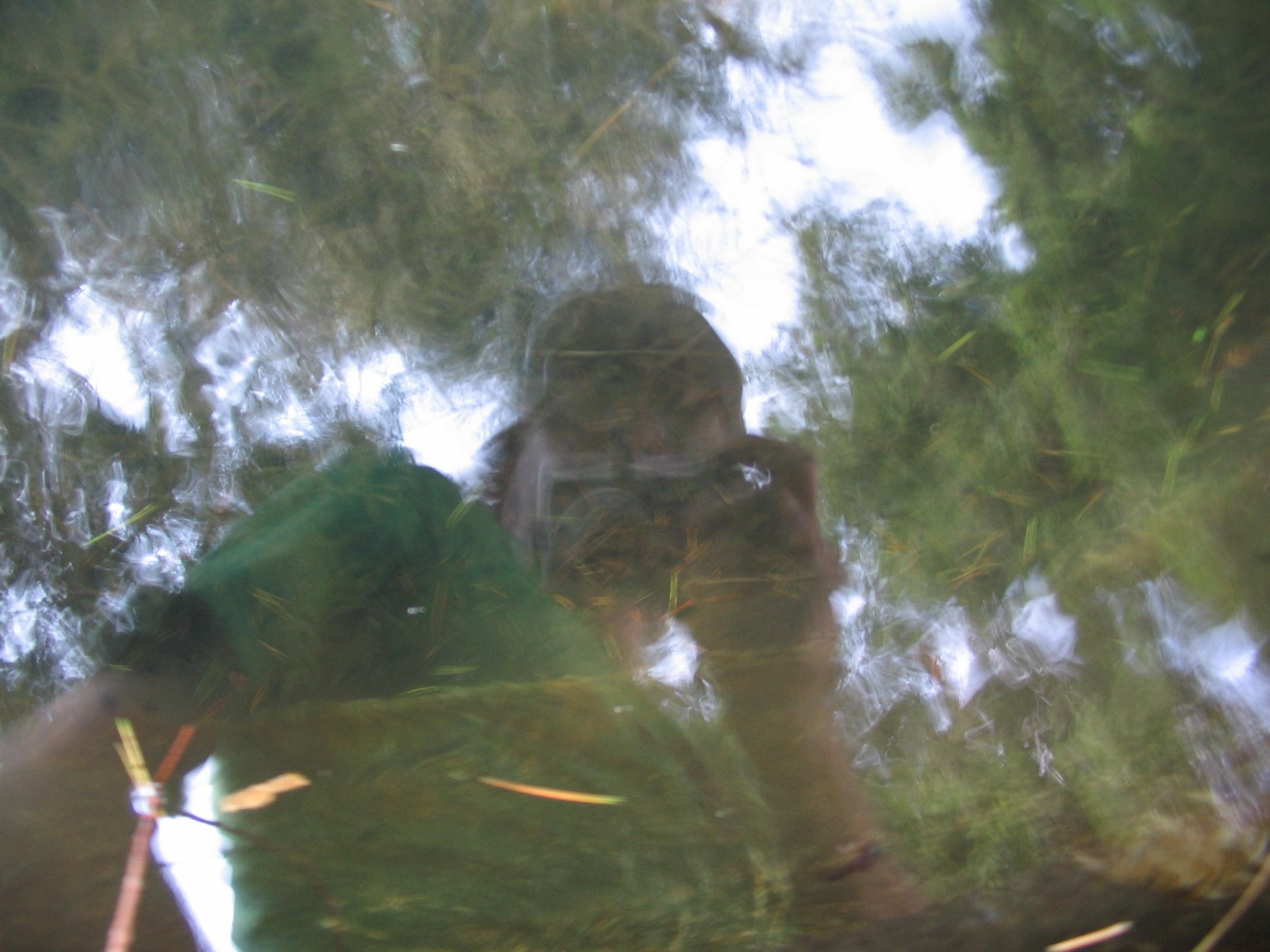 groen zelfportret - lucca 2006