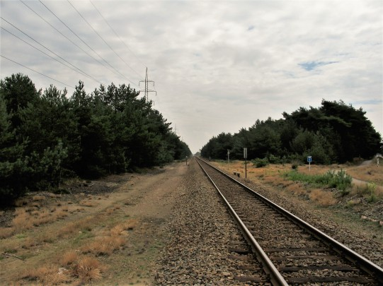 treinreis 2