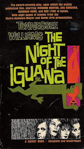 night of the iguana 2