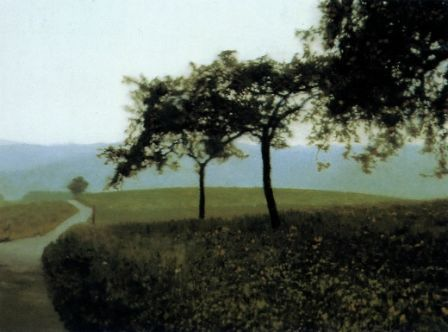 gerhard richter - appelbomen 2
