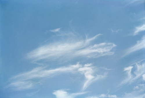 blue - william eggleston at zenith 14.jpg
