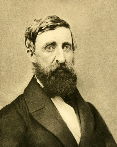 Henry_David_Thoreau_-_Dunshee_ambrotpe_1861.jpg